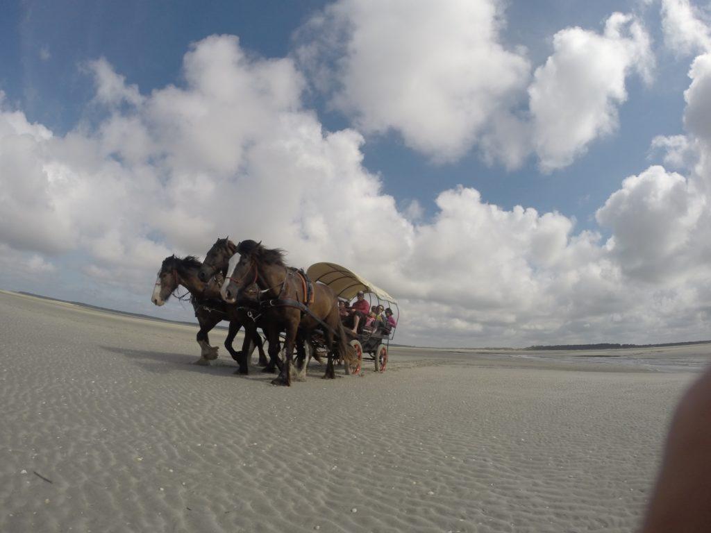calèche sur la plage du Crotoy en Baie de Somme